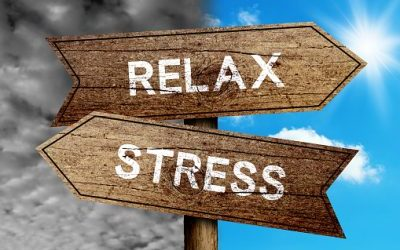 Lower Your Cortisol Levels, Reduce Your Anxiety